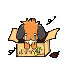 ゆるふあぽろ(個別スタンプ:21)
