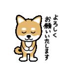 Cute! 柴犬スタンプ(個別スタンプ:14)