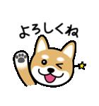 Cute! 柴犬スタンプ(個別スタンプ:15)