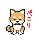 Cute! 柴犬スタンプ(個別スタンプ:16)