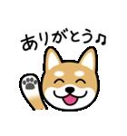 Cute! 柴犬スタンプ