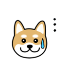 Cute! 柴犬スタンプ(個別スタンプ:21)