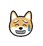Cute! 柴犬スタンプ(個別スタンプ:24)