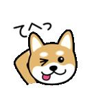Cute! 柴犬スタンプ(個別スタンプ:33)