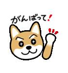 Cute! 柴犬スタンプ(個別スタンプ:36)