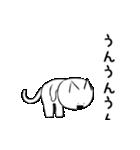 すこぶる動くネコ(個別スタンプ:13)
