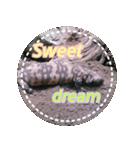 白ヘビと爬虫類の実写版(個別スタンプ:07)