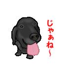 動く!黒ラブ(個別スタンプ:12)