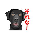 動く!黒ラブ(個別スタンプ:14)