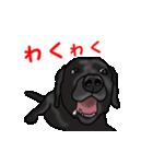 動く!黒ラブ(個別スタンプ:18)