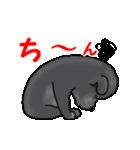 動く!黒ラブ(個別スタンプ:19)