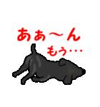 動く!黒ラブ(個別スタンプ:24)