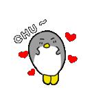 可も不可もないペンギン