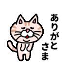 三河弁にゃんこ☆(個別スタンプ:1)