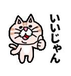 三河弁にゃんこ☆(個別スタンプ:4)