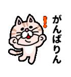 三河弁にゃんこ☆(個別スタンプ:11)