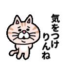 三河弁にゃんこ☆(個別スタンプ:12)