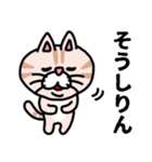 三河弁にゃんこ☆(個別スタンプ:14)