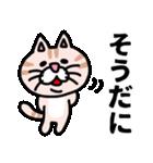 三河弁にゃんこ☆(個別スタンプ:15)