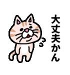 三河弁にゃんこ☆(個別スタンプ:16)