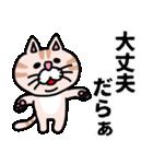 三河弁にゃんこ☆(個別スタンプ:17)