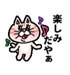 三河弁にゃんこ☆(個別スタンプ:18)