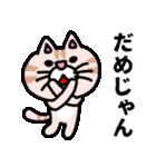 三河弁にゃんこ☆(個別スタンプ:19)