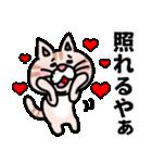 三河弁にゃんこ☆(個別スタンプ:23)