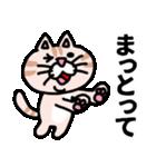 三河弁にゃんこ☆(個別スタンプ:33)