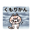 三河弁にゃんこ☆(個別スタンプ:39)