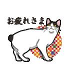 和ごころ(個別スタンプ:1)