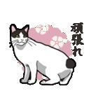 和ごころ(個別スタンプ:3)