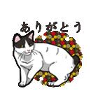 和ごころ(個別スタンプ:29)