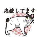 和ごころ(個別スタンプ:36)