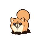 ボンレス犬 Vol.5(個別スタンプ:02)