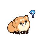 ボンレス犬 Vol.5(個別スタンプ:22)