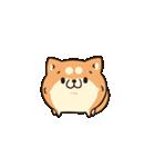 ボンレス犬 Vol.5(個別スタンプ:23)