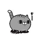 ボンレス猫 Vol.5(個別スタンプ:13)