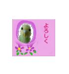 羊毛フェルトのトリちゃんシリーズ 1(個別スタンプ:3)