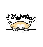 秋田犬LOVE(個別スタンプ:7)