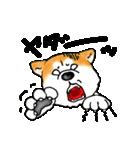 秋田犬LOVE(個別スタンプ:24)