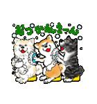 秋田犬LOVE(個別スタンプ:29)