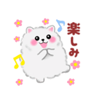 ポメラニアン☆ぽちゃんの日常会話(個別スタンプ:31)