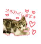 うちのお嬢♡(個別スタンプ:14)