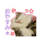 うちのお嬢♡(個別スタンプ:18)