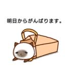 乾いた目をしている猫(個別スタンプ:16)