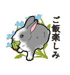 もふもふウサギ 2(個別スタンプ:2)