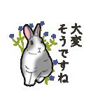 もふもふウサギ 2(個別スタンプ:3)