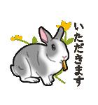 もふもふウサギ 2(個別スタンプ:4)