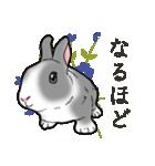 もふもふウサギ 2(個別スタンプ:5)